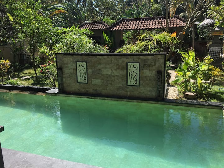 Lovina - North Bali - Lovely 2 BR Villa with pool