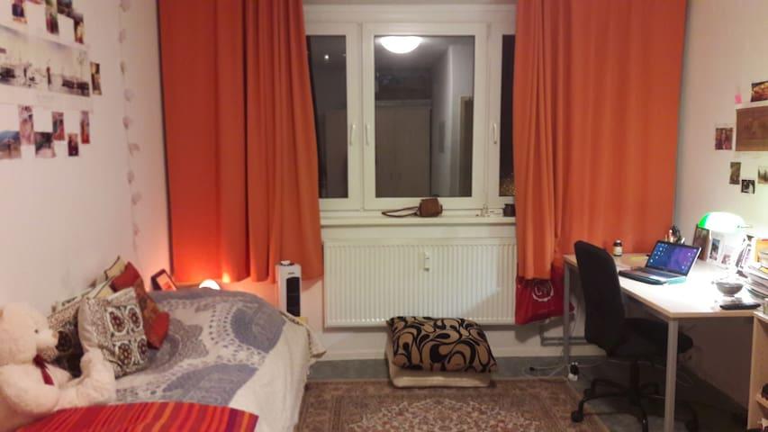 1 big room in the center of city - Erlangen