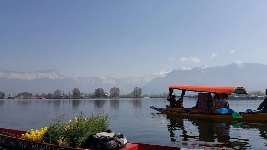 Experience Floating Luxury - Srinagar - Boat