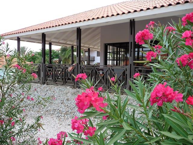 Blue Bay Beach Villa Curacao - CW - Villa