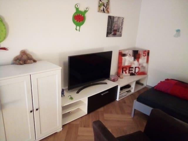 1-4 Zimmer in grosser Neubauwohnung (2 Balkone)