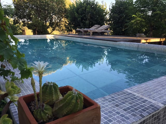 our swimming pool- you are welcome to use it :)