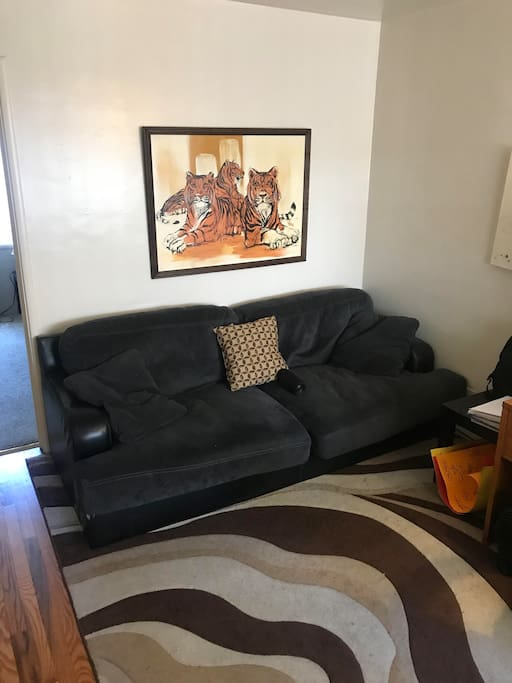 Couch that can be slept on in living room.