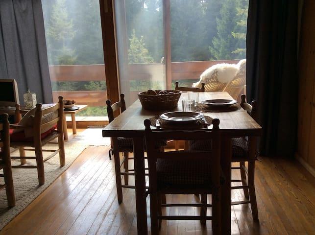 Vista sul bosco, tutto in legno, 6 letti 2 bagni. - San Martino di Castrozza - Apartment