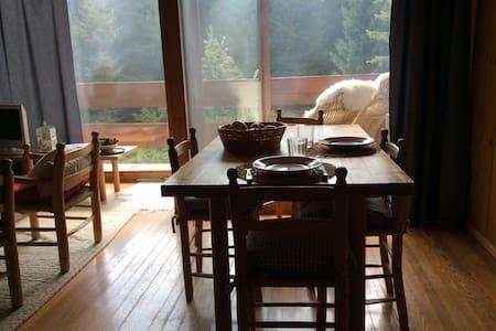 Vista sul bosco, tutto in legno, 6 letti 2 bagni. - San Martino di Castrozza