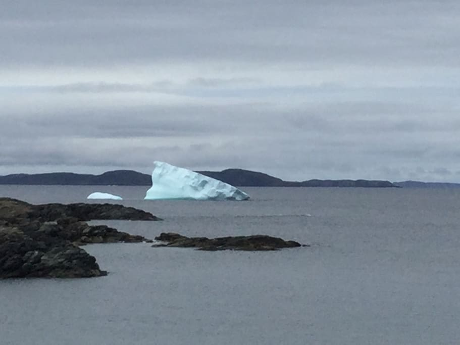 Icebergs viewed from the shore.
