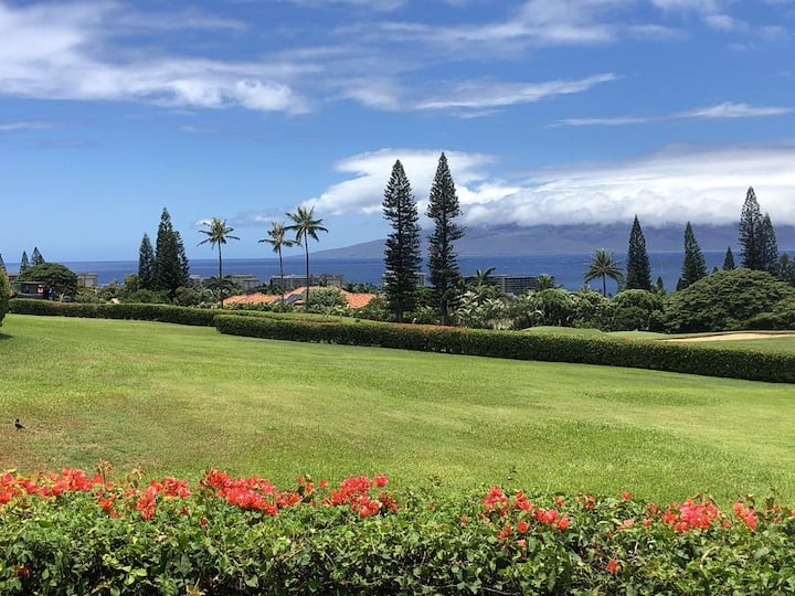 Best Ocean Views on Maui with Golf Cart Included!
