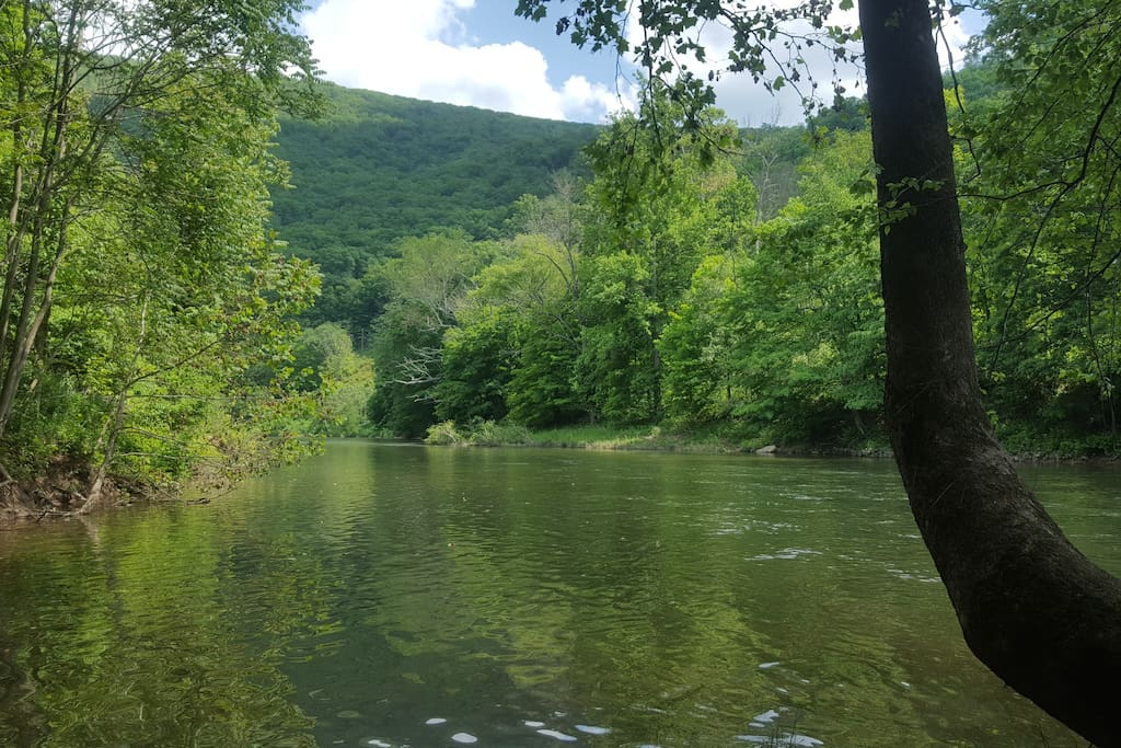 The neighborhood has a private access to the Cacapon River for kayaking, tubing and fishing.