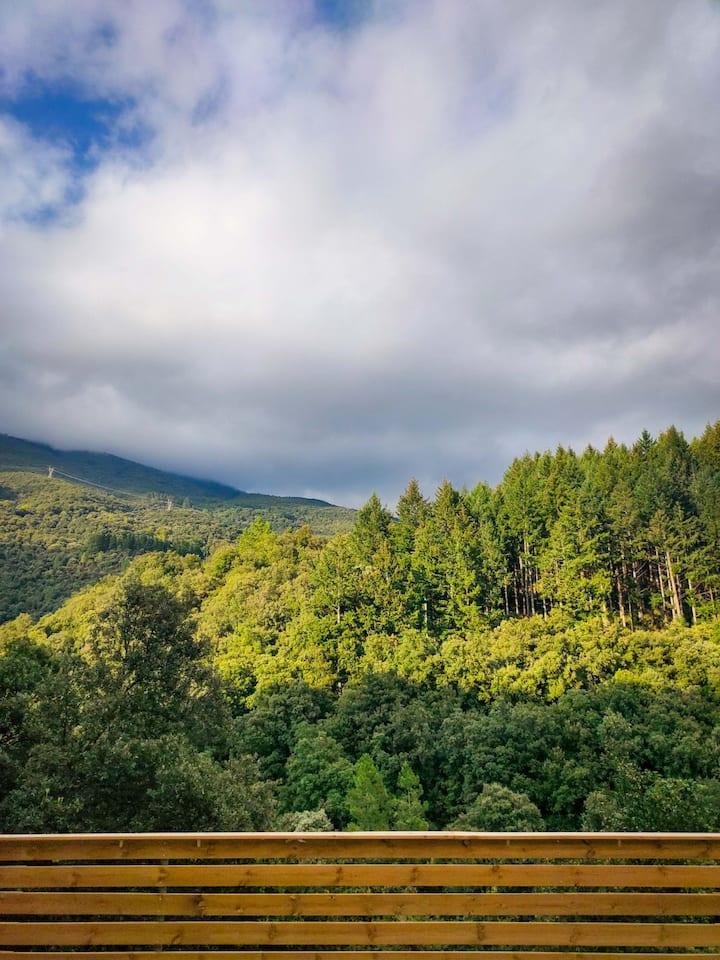 Cabaña de madera en el Parc Natural del Montseny