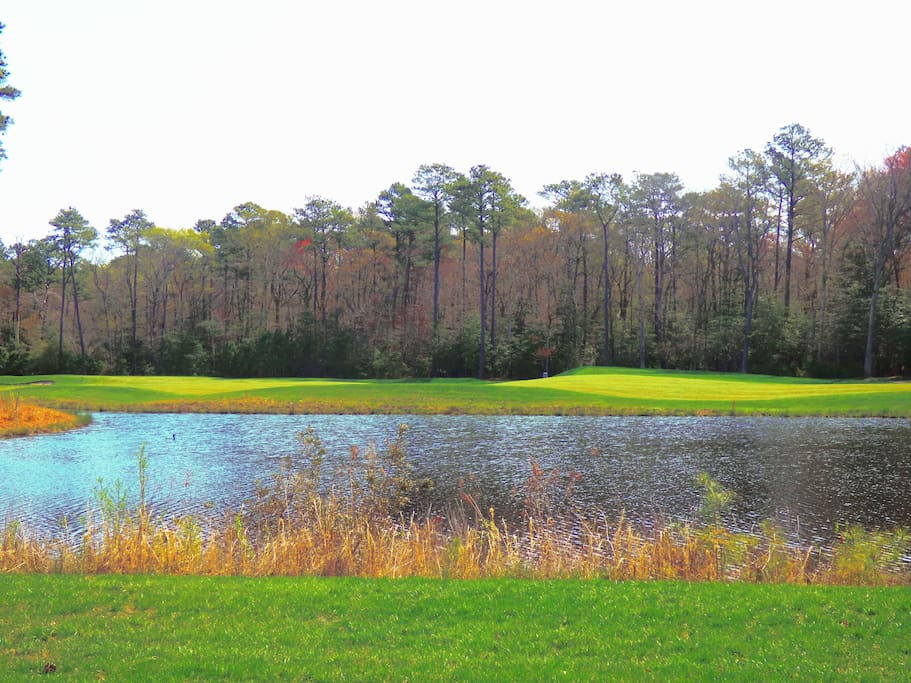 The pond overlooking the 2nd hole on War Admiral. (Yep, this is the backyard!)