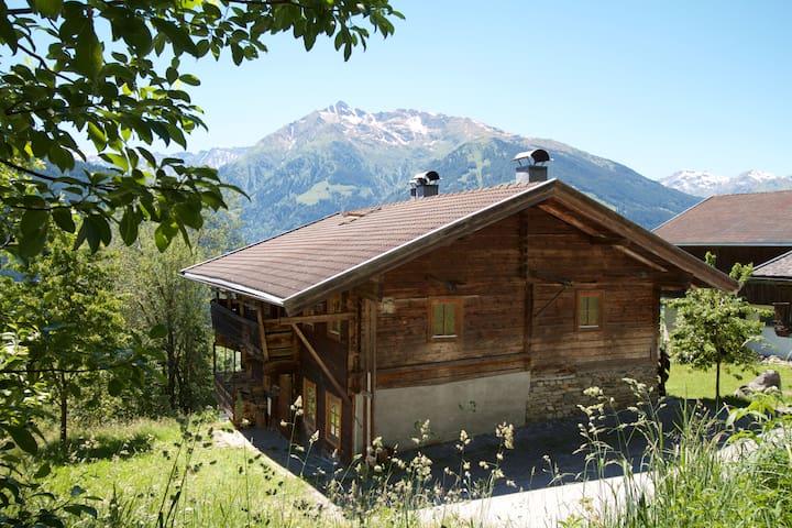 Kitzbüheler Alpen: Urige Almhütte mit Bergblick