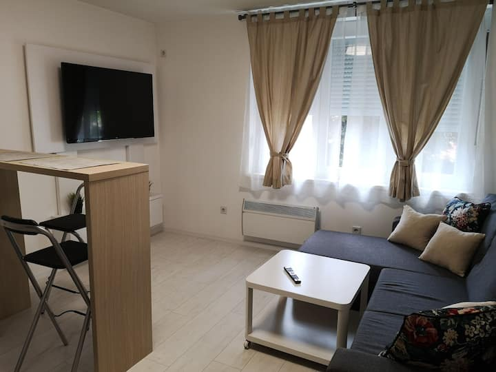 "Nice apartment in city center ""Ajna"""
