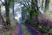 Out the back road Dromahair