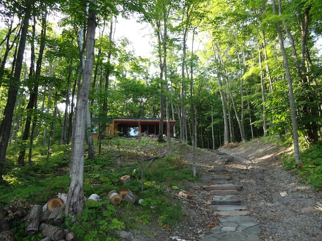 Muskoka Dream Cottage - Lake Vernon - Huntsville