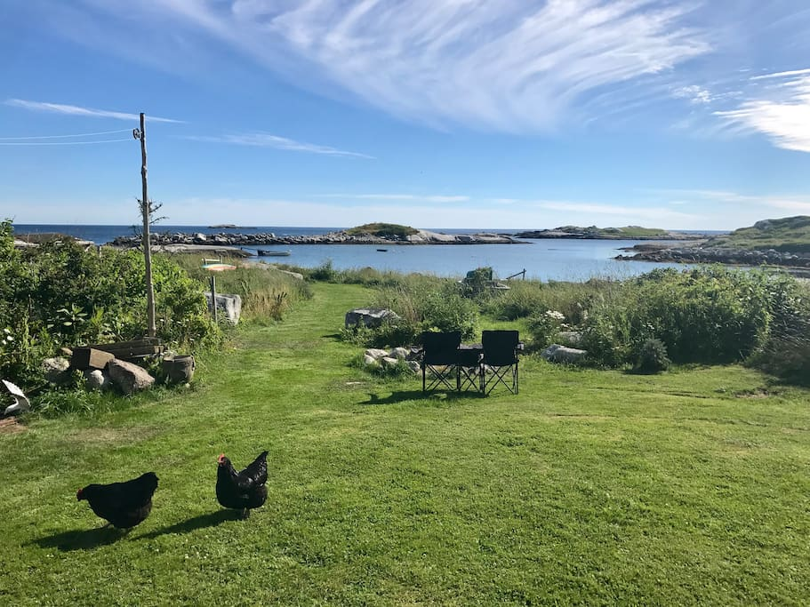 back yard, and chickens (providing you with fresh eggs)