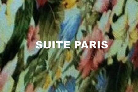 Suite Paris Marbella center. Garden, swimming pool - Marbella - Loft