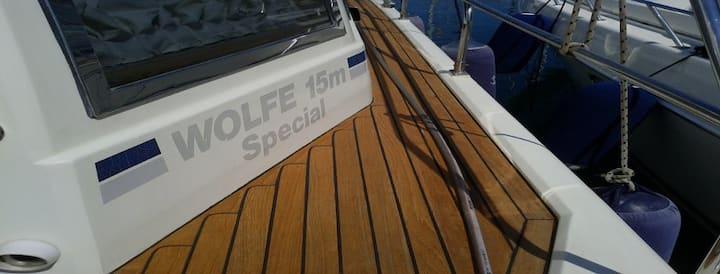 "Motor Yacht ""L.L"" 46 Fly"