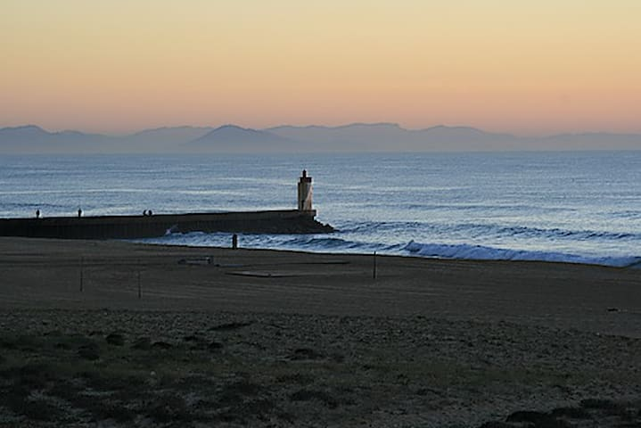 T2 Gde terrasse sud vue mer ****sur cette plage - Capbreton - Appartamento
