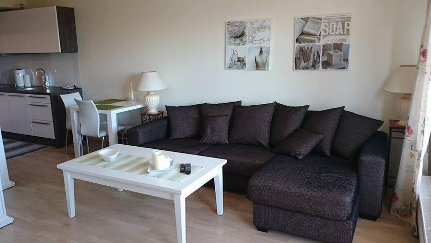 New sunny apartment with a balcony! - Tallinn - Apartment