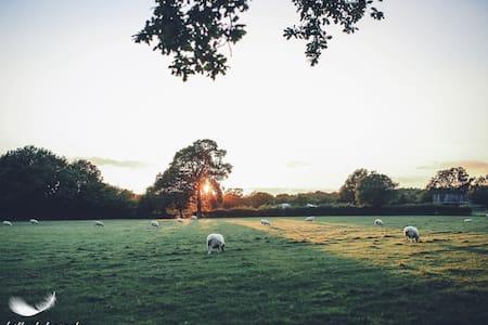 Green Farm Barn Midweek - Shadoxhurst