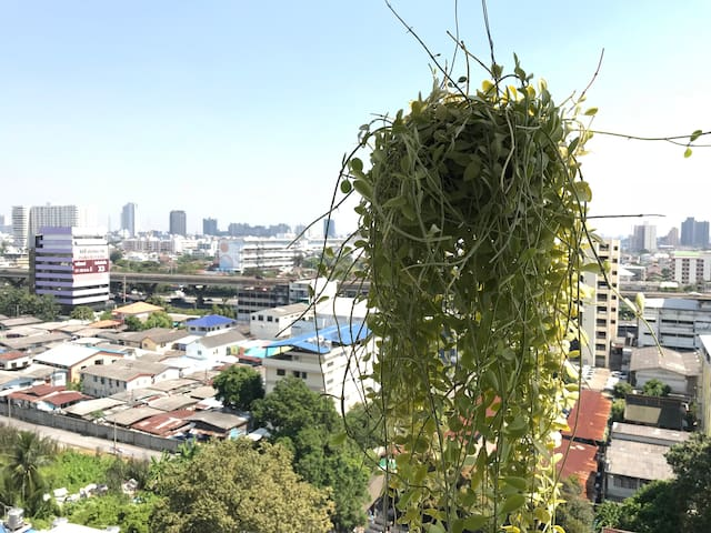 REAL Bangkok- Local Thai experience/WiFi/JJ Market