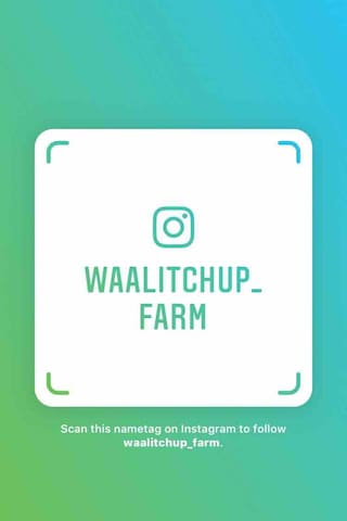 Follow us on Instagram ❤️
