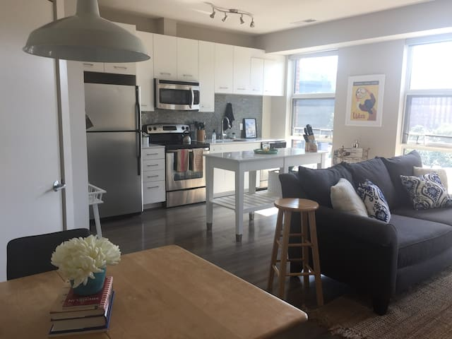 Luxury Apt. just mins from Capitol & National Mall