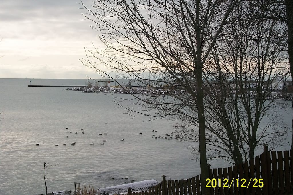West view - dock to Pelee Island