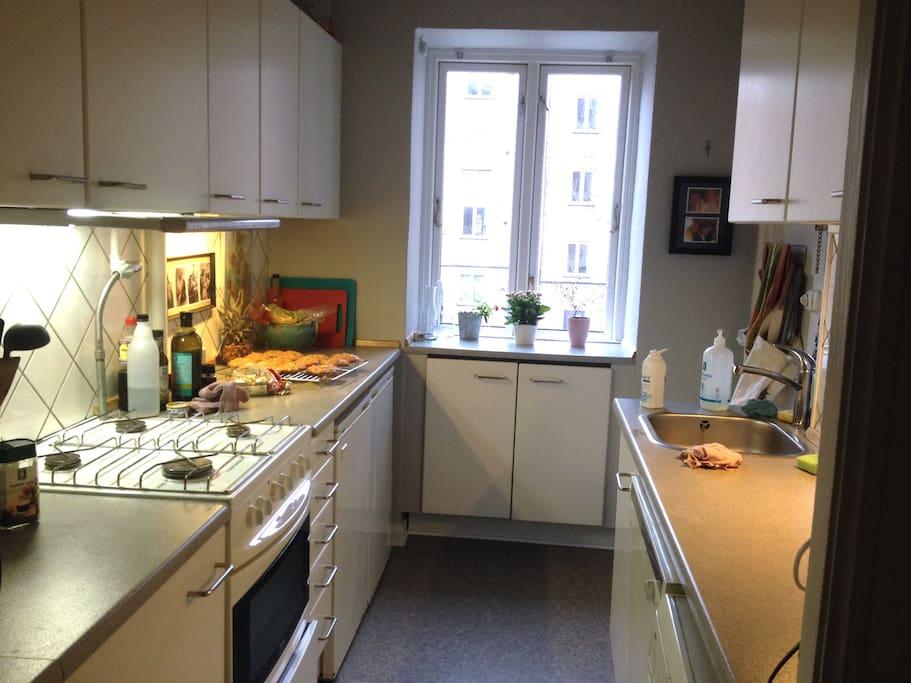 Clean kitchen with dish washer and washing machine
