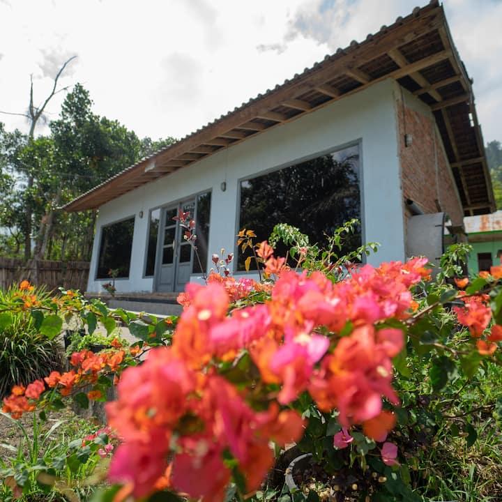 Quaint newly built house mount Batur