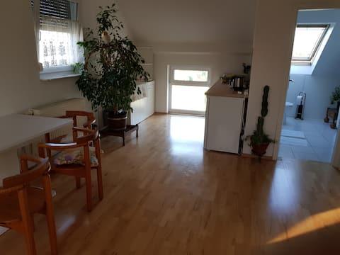 Cozy studio appartment near Frankfurt