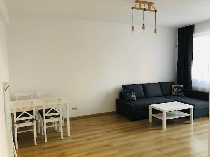 Apartament de inchiriat warm and cozy