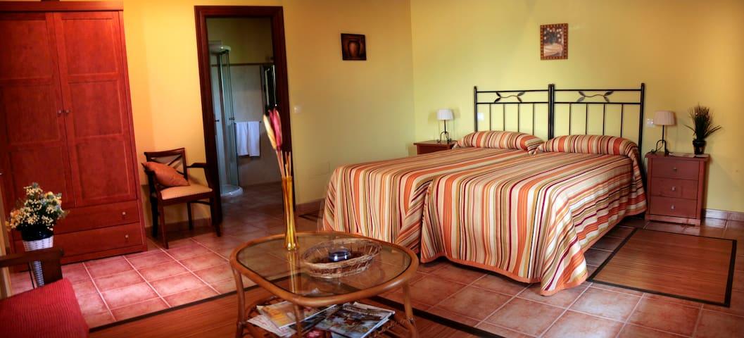 Habitacion doble con terraza - Ubiarco - Other