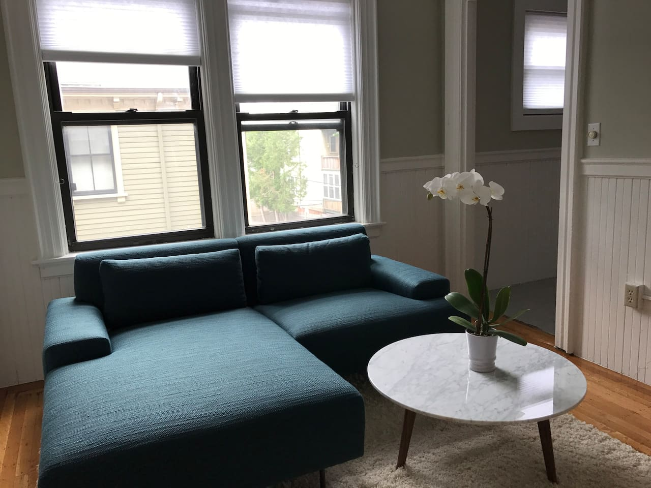 Living room with new West Elm and Article furniture