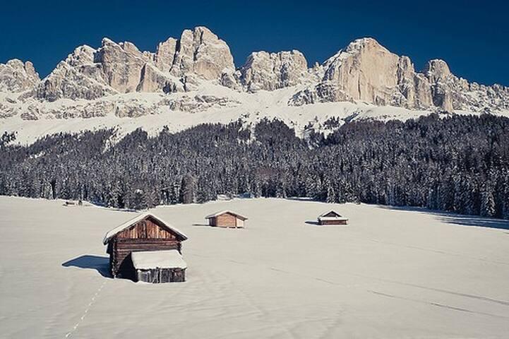 Sciare nelle Dolomiti solo 11-18 gen 2020