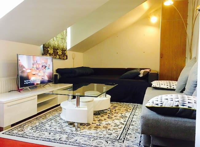 ENTIRE PRIVATE APARTMENT & GREAT CENTRAL LOCATION - Malmö - Appartement