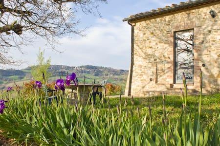Capanna - villino indipendente in fattoria Toscana - Radicondoli - Villa
