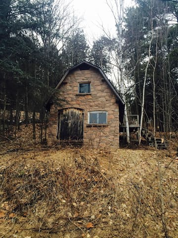 The Dorset Outpost Bunkie next to Algonquin Park - Dorset - Guesthouse