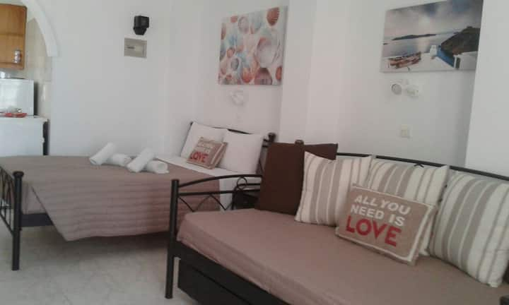 Shinny and elegant apartment with private balcony.
