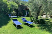 Private olive trees garden with Lake view (15mt far from the Flat)