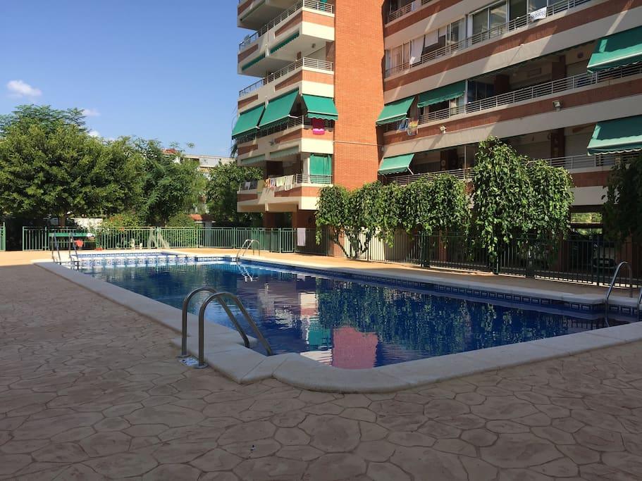 Playa san juan apartamento con piscina wifi ac suite for Camping con piscina climatizada en comunidad valenciana