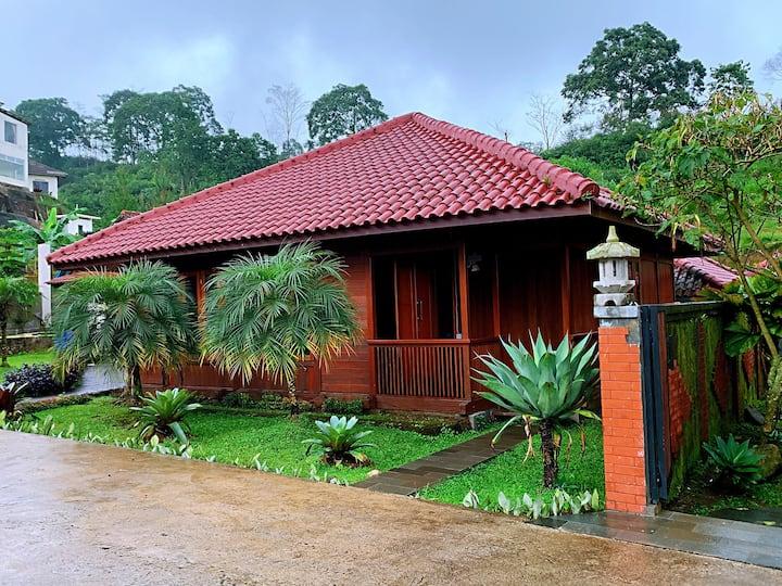 Villa Top View (V1)