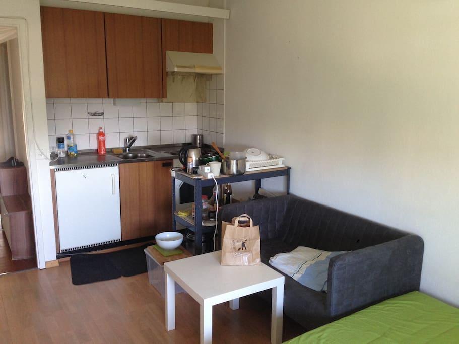 private studio 25 m2 near montelly metro station apartamentos para alugar em lausanne vaud. Black Bedroom Furniture Sets. Home Design Ideas