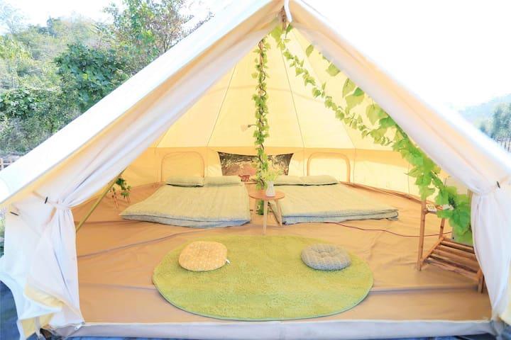 轻奢森系露营,秘林主题帐篷-树深见鹿