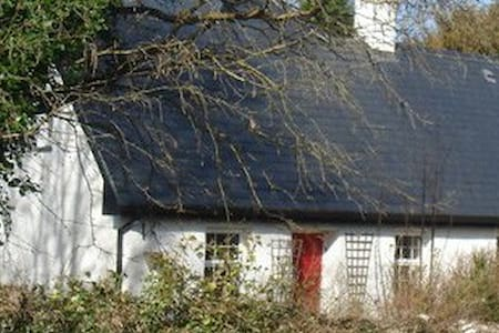 Romantic Living Room & Bedroom in 1850s Cottage - Gort - Sommerhus/hytte