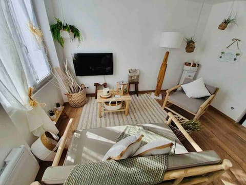Charming apartment in the heart of the city of Marmande