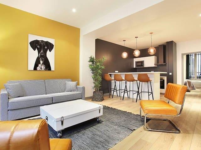 Magnifique Appartement centre Paris