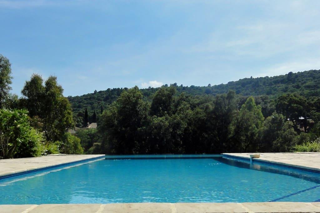 Endless pool 5x14 m