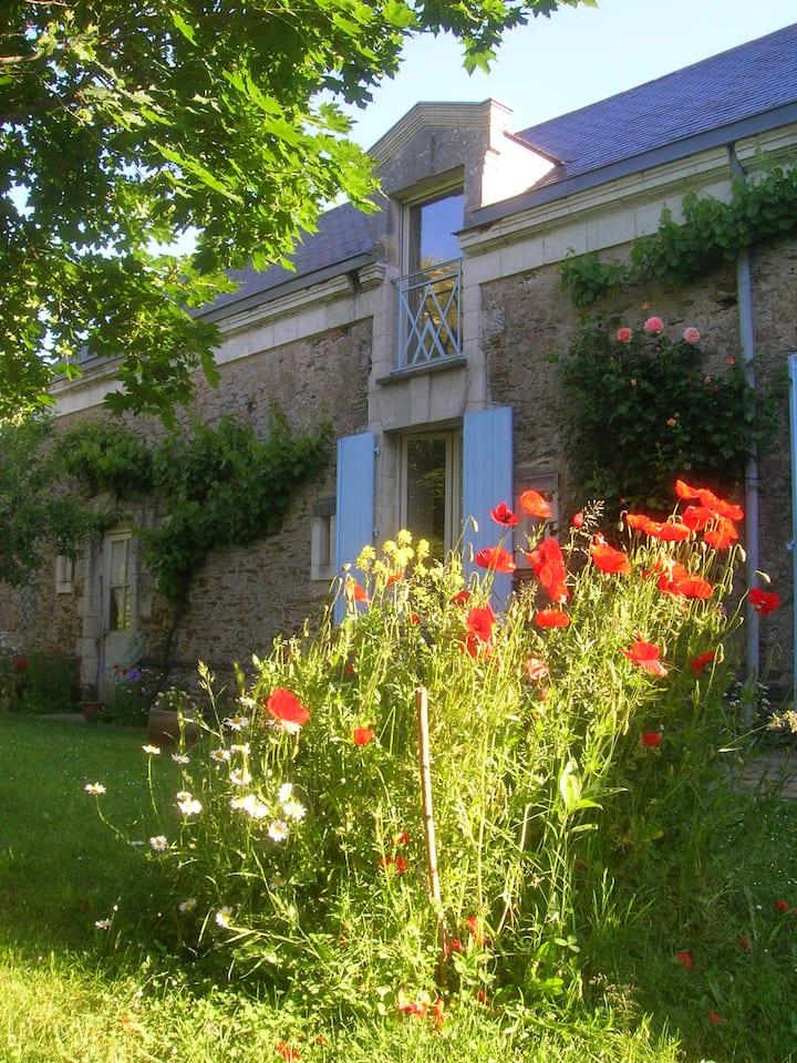 Chambre nature dans village de Loire