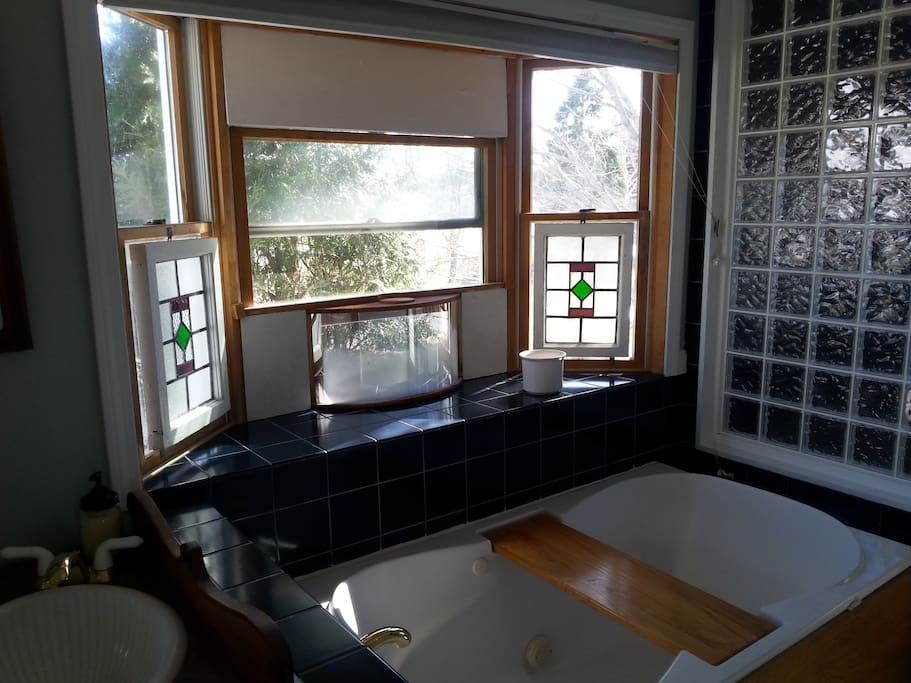 Master bath with jacuzzi tub double shower